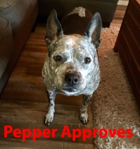 pepeapproved