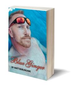 3D-Book-TemplateBlueGinger 3d